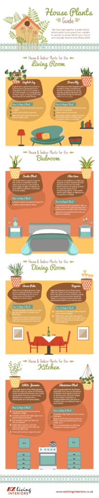 edithouseplants 204x1024 - Guide to Keeping Houseplants Alive