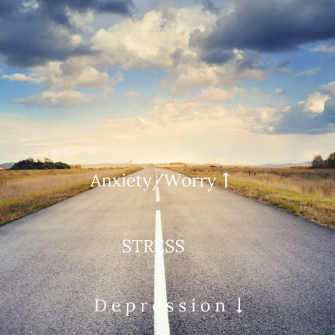 sunrise 114 - The Bermuda Triangle—Depression, Anxiety, and Stress